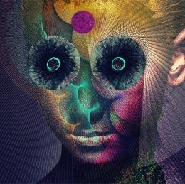The Insulated World【通常盤】