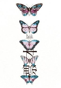 標本【TYPE-A】