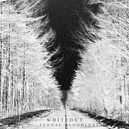 WHITEOUT【初回限定盤】
