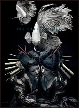 the GazettE LIVE TOUR 12-13[DIVISION]FINAL MELT LIVE AT 03.10 SAITAMA SUPER ARENA【初回生産限定盤】
