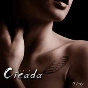 Cicada【限定盤】