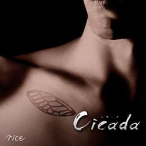 Cicada【通常盤】
